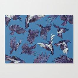 navy birds Canvas Print