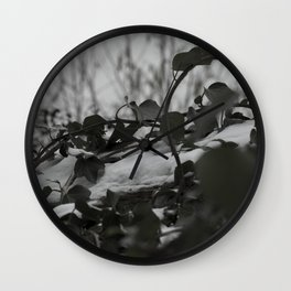 Snow covered ivy Wall Clock