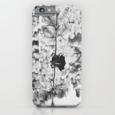 In the Woods, In the Pond iPhone 6s Slim Case
