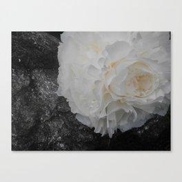 Crystal Peony by Teresa Thompson Canvas Print