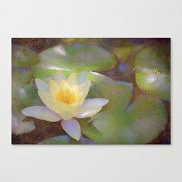 Pond Lily 35 Canvas Print