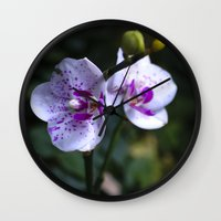 orchid Wall Clocks featuring Orchid by MVision Photography
