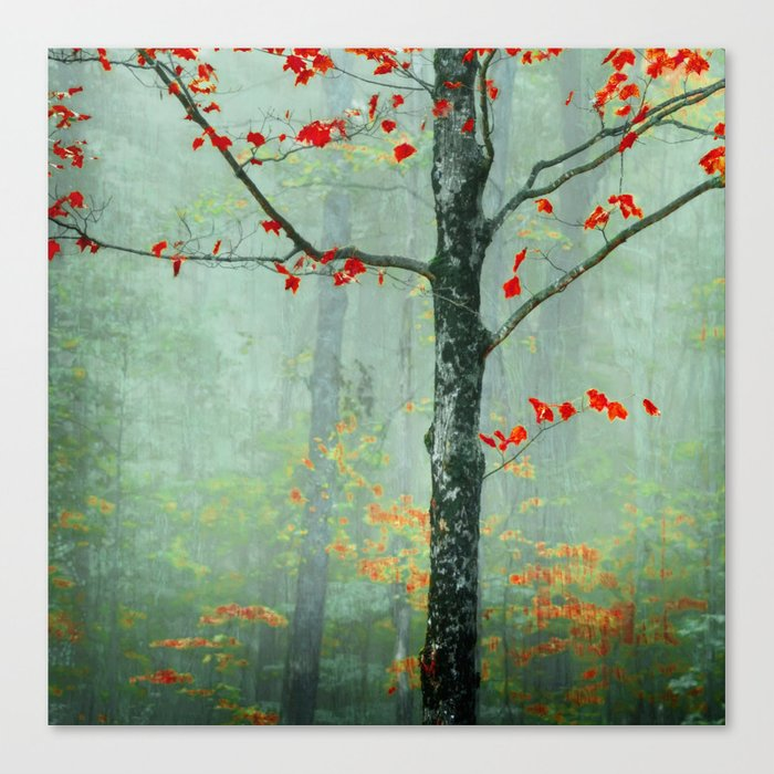 Another Day, Another Fairytale Canvas Print