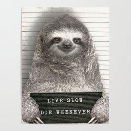 Sloth in a Mugshot Poster