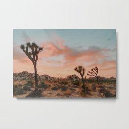 Joshua Tree IX / California Desert Metal Print