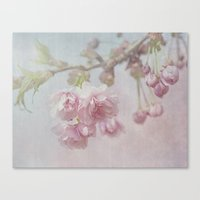 cherry Canvas Prints featuring Cherry by Anne Seltmann