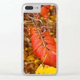 autumnal leaves Clear iPhone Case