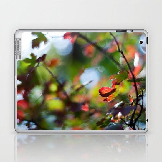 Autumn Rainbow Laptop & iPad Skin