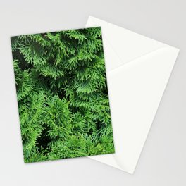 Ever Green Stationery Cards