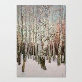 Birches. Winter Canvas Print