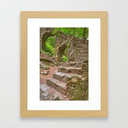 Forest Castle Ruins Framed Art Print