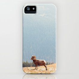 Rams, Landscape iPhone Case