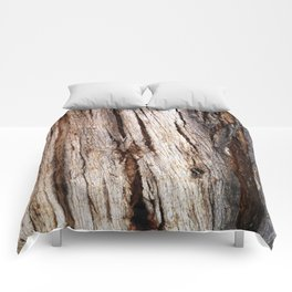 Shiver Me Timbers - 1 Comforters