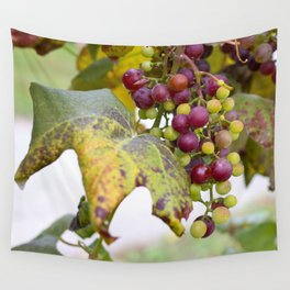 Green and purple grapes on the vine Wall Tapestry