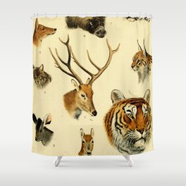 The Great and Small Game of Europe, Western and Northern Asia and America Shower Curtain