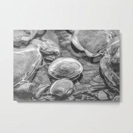 Ice Encased Rocks B&W Metal Print