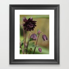 Black Barlow Framed Art Print