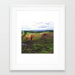 Shaggy Framed Art Print