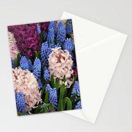 Coloful hyacinth garden Stationery Cards