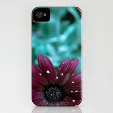 Evening Bloom iPhone (4, 4s) Slim Case