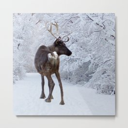 Reindeer and Snow Metal Print