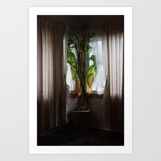 Houseplant  Art Print