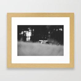 Hiding Framed Art Print