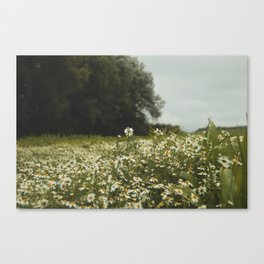 Give me your answer, do. Canvas Print