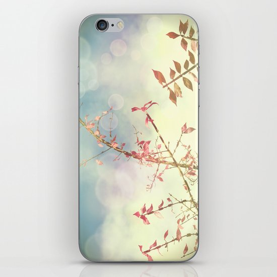 Reach iPhone & iPod Skin