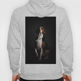 Greater Swiss Mountain Dog Hoody