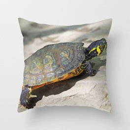 Turtle on the rock Throw Pillow