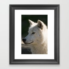 Arctic Wolf Portrait Framed Art Print