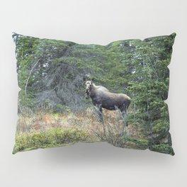 Mr. Moose Way Up North Pillow Sham