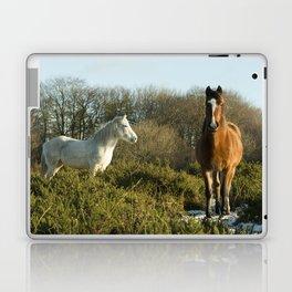 Beacon Horses Laptop & iPad Skin