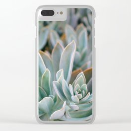 Graptoveria Study #1 Clear iPhone Case