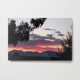 Nice View Metal Print