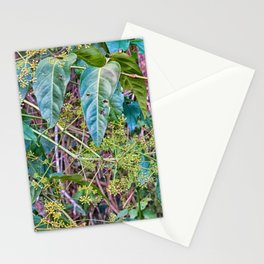 Budding in the rainforest Stationery Cards