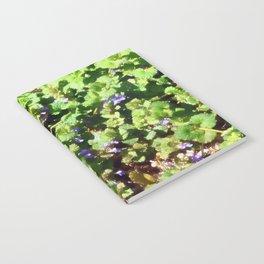 Ground Ivy 05 Notebook