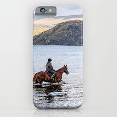 Horse at Airds Bay Loch Etive iPhone 6s Slim Case