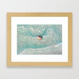 Rhine Shell Framed Art Print
