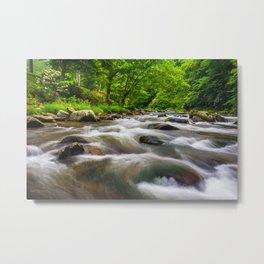 Raven Fork Cascades 03 Metal Print