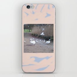 Swans 3 iPhone Skin