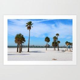 A Florida Winterday Art Print