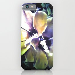 Sun Rays On The Hibiscus Flower iPhone Case