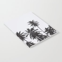 Palm 05 Notebook
