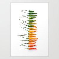 Hot Pepper Gradient Art Print