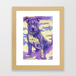 Rainbow Blue Nose Pitbull Framed Art Print