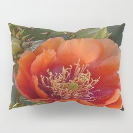 DESERT BEAUTY Pillow Sham