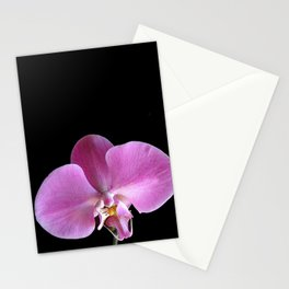 Pink Orchid Flower Closeup Stationery Cards