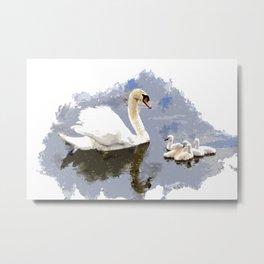 Swan and Cygnets on the Pond Metal Print